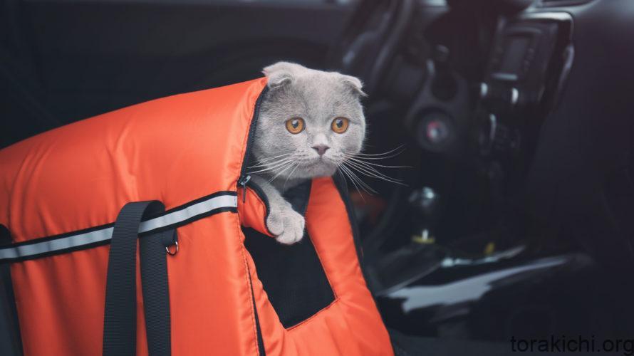 猫のキャリーバッグの種類をピックアップ。オススメはどれ?