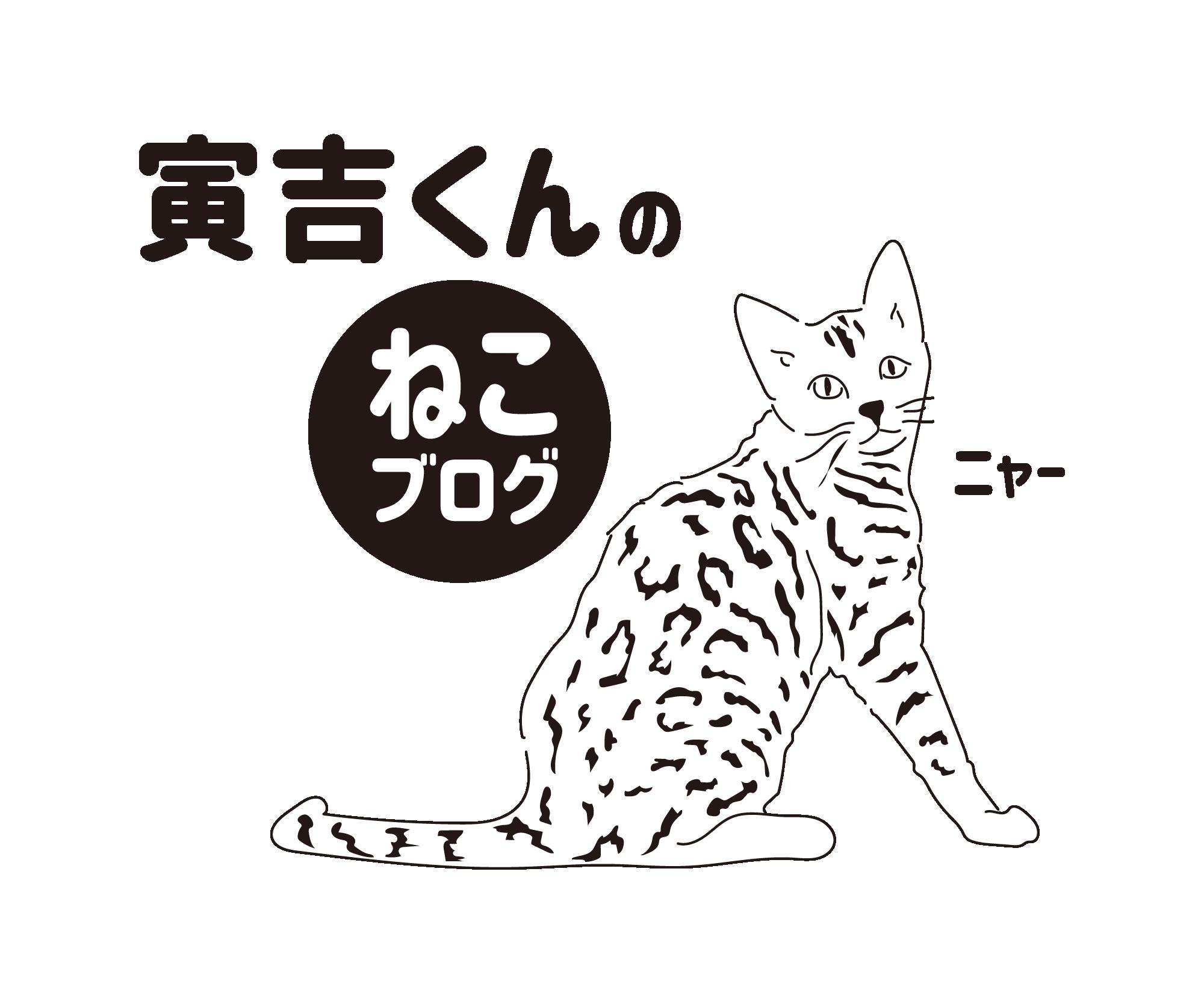 寅吉くんの猫ブログ